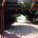pedestrian-road-near-house-for-sale-dhekelia-road