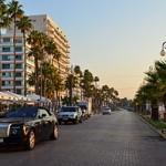 300px-Palm_trees_promenade